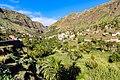 Palm trees in the valley of Valle Gran Rey on La Gomera, Spain (48293752576).jpg