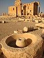 Palmyra (2599942111).jpg