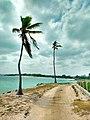 Paraíso del caribe.jpg