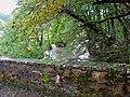 Parapet, Ceri Bridge, Dol-gôch - geograph.org.uk - 997380.jpg