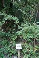 Parc naturel 02697.JPG