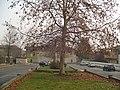 Parcheggio di Porto d'Adda.jpg