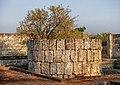 Parco archeologico - Fonte Pliniano.jpg