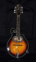 Mandolin - Wikipedia