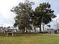 Parque Espiñoso, Cartelle.jpg