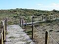 Passoscuro - Dune a nord, verso la spiaggia di Palidoro 18.jpg