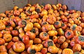 Persimmons in a box.jpg