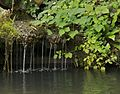 Petite cascade château Monte Cristo Port Marly.jpg