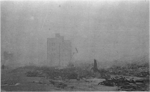 Photo-TokyoAirRaids-1945-3-10-Hanakawato-Remains on Road.png