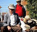 PikiWiki Israel 35729 like in a movie.JPG