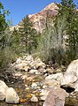 Pine Creek Canyon 6.jpg