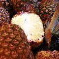 Pineapple mg 3825.jpg