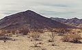 Pinto Basin Road (16043301515).jpg