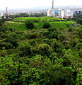 Piramide de Cuicuilco y la ciudad.JPG