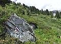 Plaque Parc National de la Vanoise (Aussois).JPG