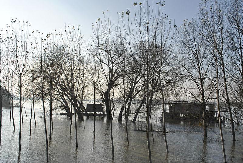 File:Po river Francolino Ferrara.JPG
