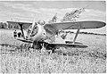 Polikarpov I-153 SA-kuva 20616.jpg