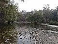 Polo forest Vijaynagar.jpg