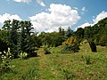 Poltava Botanical Garden (166).jpg