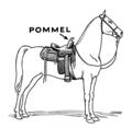 Pommel 2 (PSF).png