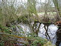 Pond near Llanynys - geograph.org.uk - 136219.jpg