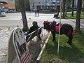 Pony in Smolensk.jpg