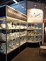 Porcelana Lubiana HORECA13.jpg