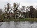 Potok Oliwski pond3.jpg