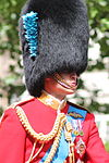 Prince William Trooping the Colour.JPG