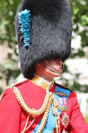 The Duke of Cambridge at Queen Elizabeth II's Birthday Parade, June 2013 Prince William Trooping the Colour.JPG