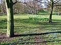 Princess Elizabeth Playing Fields - geograph.org.uk - 745334.jpg