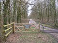Private road to Ashenwood, Beaulieu Estate - geograph.org.uk - 351591.jpg