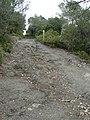 Prop del turó de Can Castellví P1240640.jpg