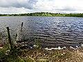 Prospect townland, Corlough parish, County Cavan, Republic of Ireland. Looking west over Brackley Lough.jpg