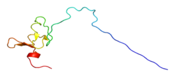 Protein SYTL4 PDB 2csz.png