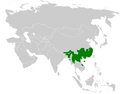 Psittiparus distribution map.png