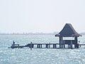 Puerto Playa tiburón.jpg
