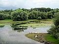 Réserve Naturelle du Delta de la Sauer, Alsace, France - panoramio (2).jpg