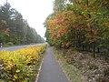 Radweg Sperenberg - Kummersdorf Gut - panoramio.jpg