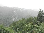 A rainy day in the Great Smoky Mountain, Western North Carolina