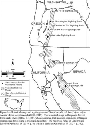 Sierra Nevada red fox - Image: Range and sighting areas of Sierra Nevada red fox