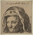 Rembrandt's Mother in a Cloth Headress, Looking Down MET DP818340.jpg
