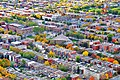 Residential streets - panoramio.jpg