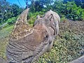 Rhino-01-01.jpg