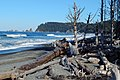 Rialto Beach on a beautiful autumn morning.jpg