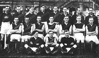 1921 VFL season