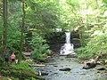 Ricketts Glen State Park Sheldon Reynolds Falls 1.jpg