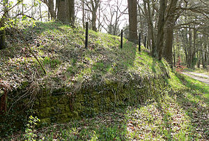 Circular rampart - External view of the Burg site
