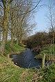 River Chelmer - geograph.org.uk - 383186.jpg