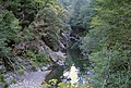 River Grotto, Rogue River-Siskiyou National Forest (36275275844).jpg